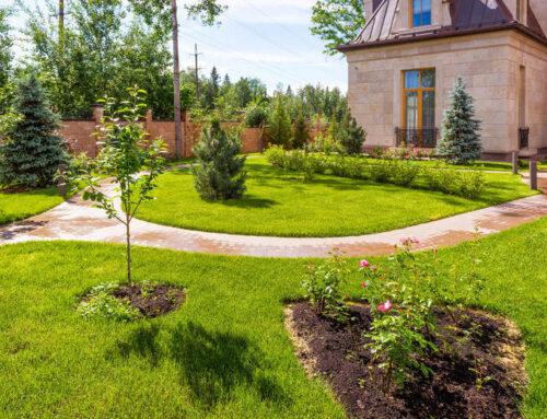 شركة تنسيق حدائق ام القيوين |0547566014| منسق حدائق