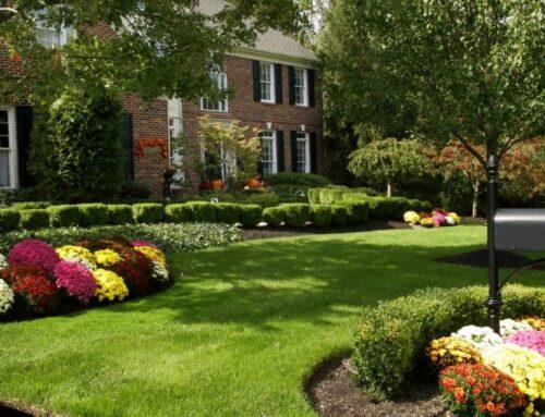 شركة تنسيق حدائق في العين |0547566014| تجميل الحدائق