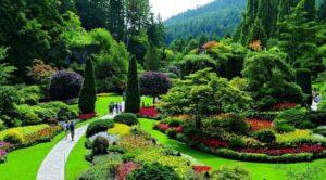 شركة تنسيق حدائق في الفجيرة